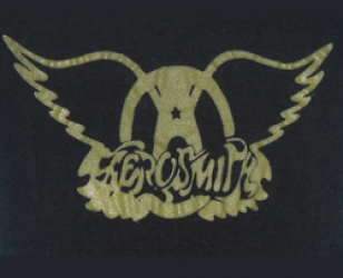 The Aerosmith